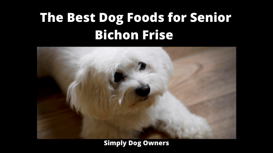 The Best Dog Foods for Senior Bichon Frise